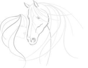 Pferd und Frau-s